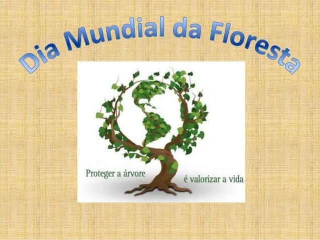 O que é uma floresta• Uma floresta é um conjunto de árvores que  nos fornecem oxigénio, que podem armazenar  substâncias.
