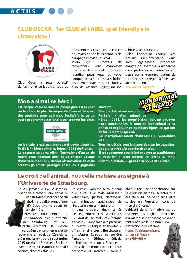 Est-ce que votre animal de compagnie est le chat ou le chien le plus héroïque de France? L'expert des produits pour animau...
