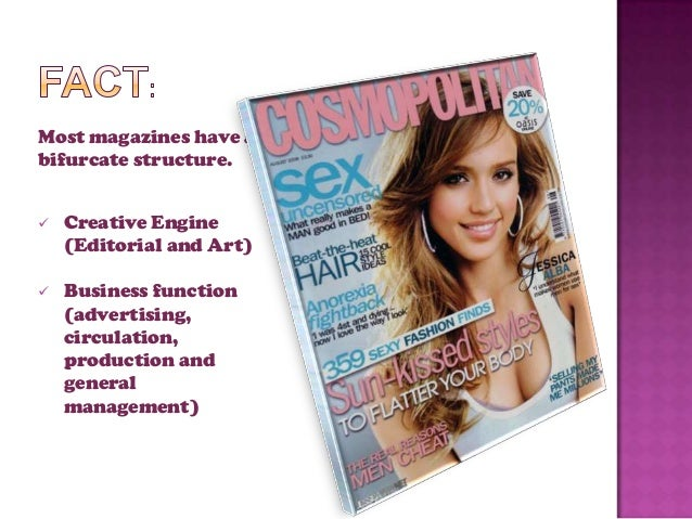 Organization Structure of the Magazine Industry Slide 2