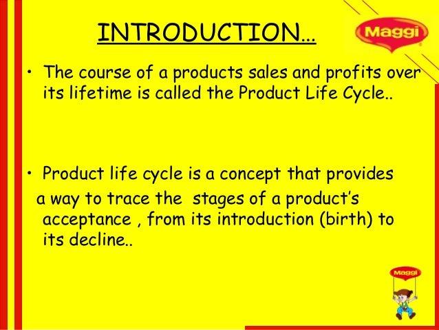 marketing strategy of maggi pdf