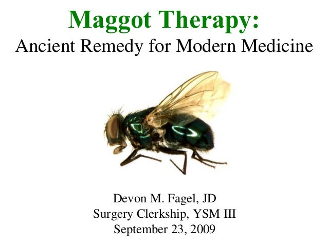 maggot therapy Most wouldn't consider maggot therapy as a good way to clean a wound however, maggots have been used for centuries to safely and effectively treat and prevent life-threatening infections.