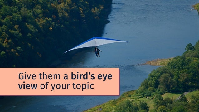 Give them a bird's eye view of your topic