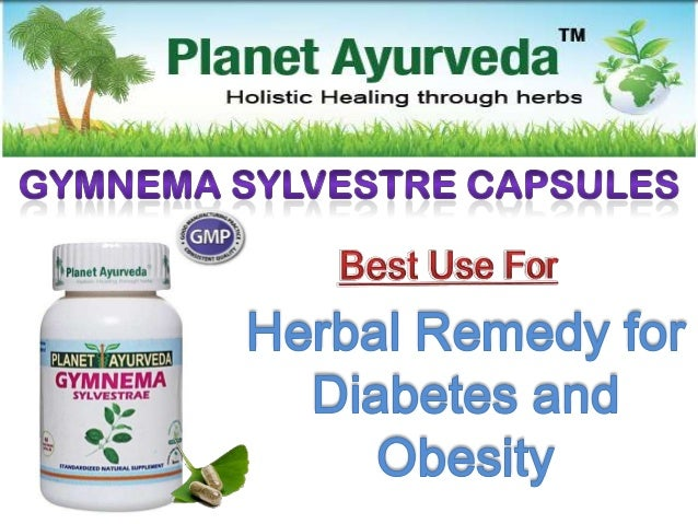 Gymnema Sylvestre  Gymnema Sylvestre is an herb native to the tropical forests of southern and central India.  Gymnema S...