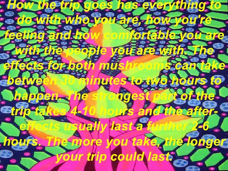 http://image.slidesharecdn.com/magicmushrooms-091113092820-phpapp01/95/magic-mushrooms-10-728.jpg?cb=1258105618 Magic