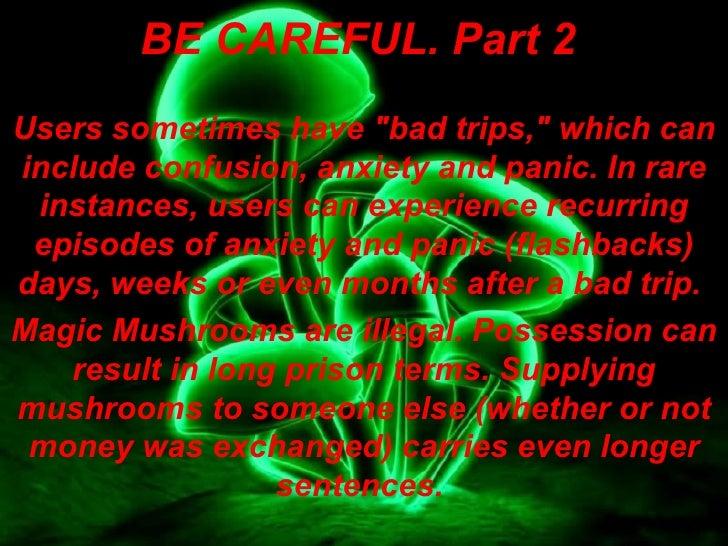 https://image.slidesharecdn.com/magicmushrooms-091113092820-phpapp01/95/magic-mushrooms-9-728.jpg?cb=1258105618 Magic
