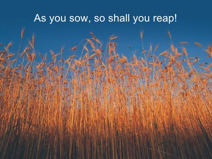 essay on what you sow so shall you reap This well-known proverb 'as you sow so shall you reap' might have been derived on seeing a farmer a farmer sows the seeds expecting to reap a good harvest.