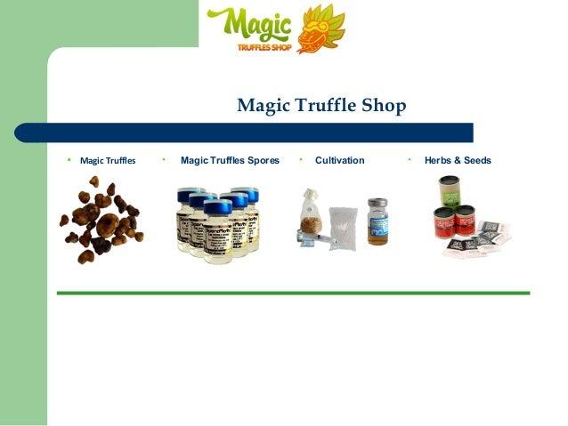 Magic truffles online   Magic Truffles Spores   Magic Truffle Cultiva…