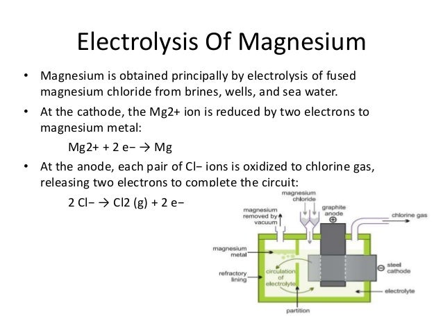 Magnesium research paper
