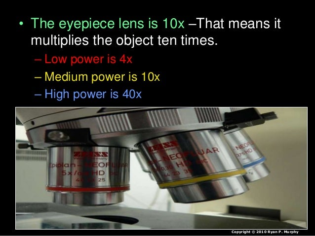 • The eyepiece lens is 10x –That means it multiplies the object ten times. – Low power is 4x – Medium power is 10x – High ...