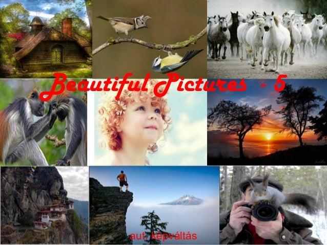 Beautiful Pictures - 5 aut. képváltás