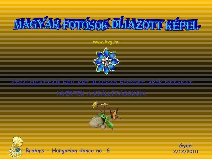 MAGYAR FOTÓSOK DÍJAZOTT KÉPEI. KIVÁLOGATTAM EGY-KÉT MAGYAR FOTÓST AKIK DÍJAKAT NYERTEK A KIÁLLÍTÁSOKON.  Gyuri   2/12/2010...
