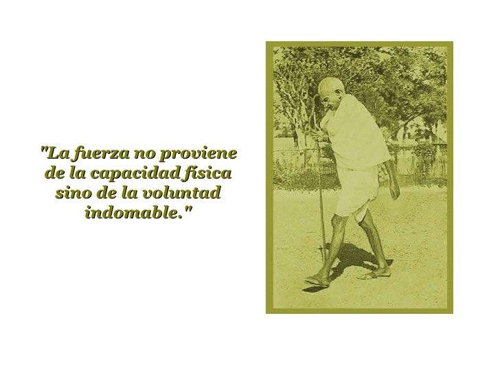 """""""La fuerza no proviene de la capacidad física sino de la voluntad indomable."""""""