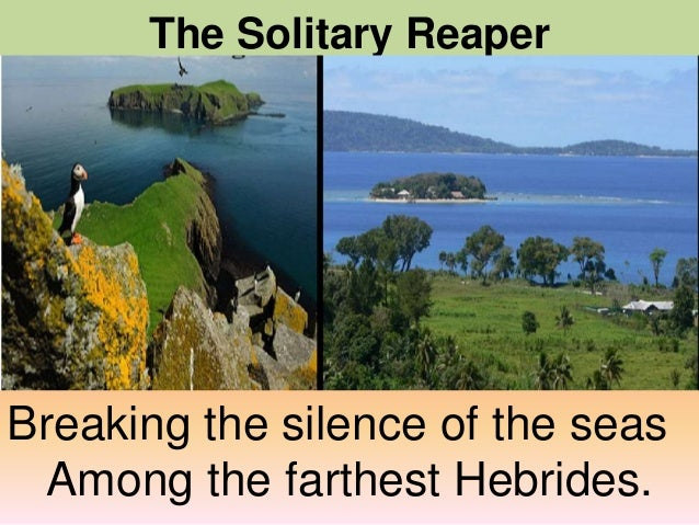theme the solitary reaper Whate'er the theme, the maiden sang as if her song could have no ending i saw her singing at her work the solitary reaper (william wordsworth) lauren hayward - 2015 - the solitary reaper (william wordsworth) listen to a recording of this poem or poet.