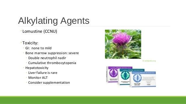 Chemo Meds Amp Side Effects Dr Jen Mahoney 10 10 15
