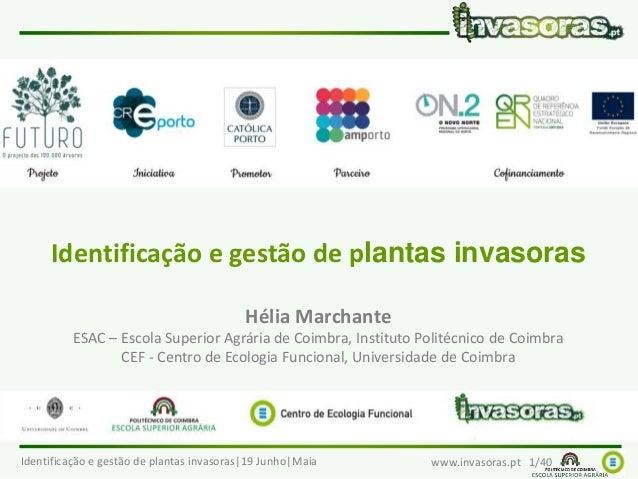 Identificação e gestão de plantas invasoras|19 Junho|Maia www.invasoras.pt 1/40 Identificação e gestão de plantas invasora...