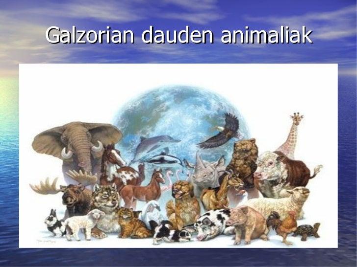 Galzorian dauden animaliak