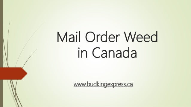 Mail Order Weed in Canada www.budkingexpress.ca