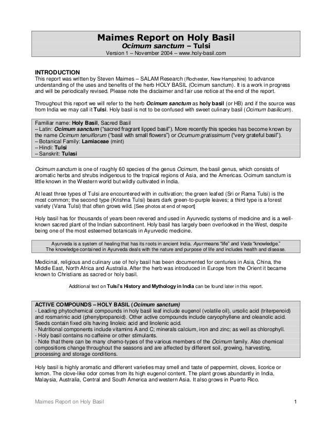 Maimes Report on Holy Basil 1 Maimes Report on Holy Basil Ocimum sanctum – Tulsi Version 1 – November 2004 – www.holy-basi...