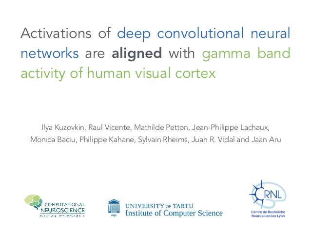 Activations of deep convolutional neural networks are aligned with gamma band activity of human visual cortex Ilya Kuzovki...