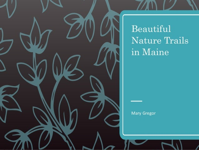 Beautiful Nature Trails in Maine Mary Gregor