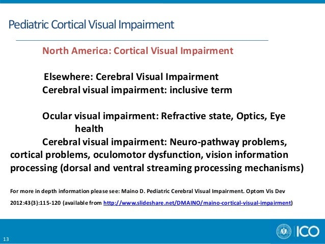 Cortical Visual Impairment New Directions