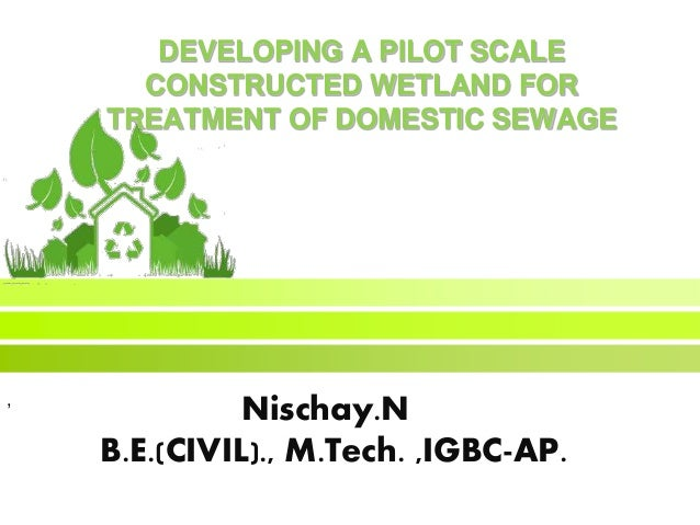 DEVELOPING A PILOT SCALE CONSTRUCTED WETLAND FOR TREATMENT OF DOMESTIC SEWAGE Nischay.N B.E.(CIVIL)., M.Tech. ,IGBC-AP. ,
