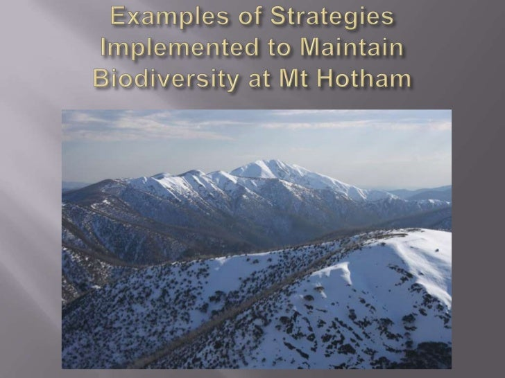 Examples of Strategies Implemented to Maintain Biodiversity at Mt Hotham<br />