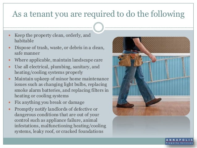 Is A Tenant Responsible For Carpet Cleaning Meze Blog