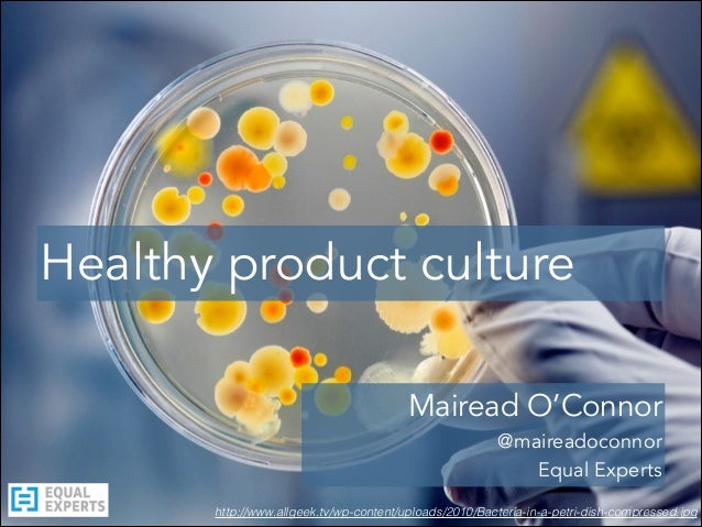 http://www.allgeek.tv/wp-content/uploads/2010/Bacteria-in-a-petri-dish-compressed.jpg Healthy product culture Mairead O'Co...