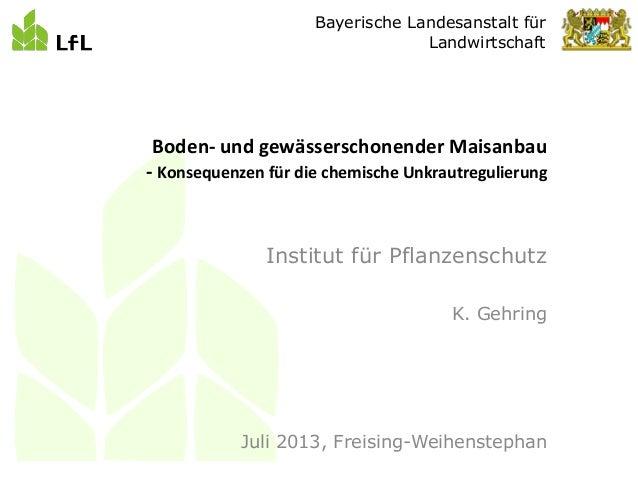 Bayerische Landesanstalt für Landwirtschaft Institut für Pflanzenschutz K. Gehring Juli 2013, Freising-Weihenstephan Boden...