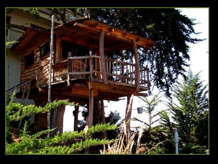 Maisons dans-les-arbres Slide 3