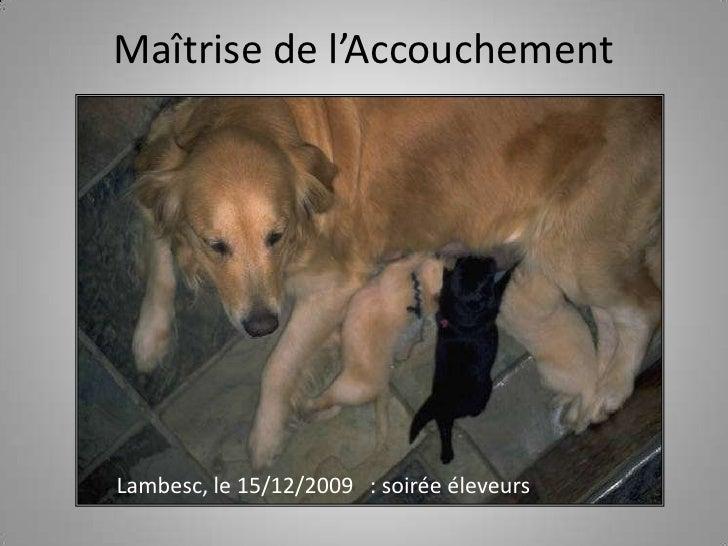 Maîtrise de l'Accouchement<br />Lambesc, le 15/12/2009   : soirée éleveurs<br />