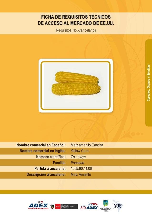 Maíz amarillo Cancha Yellow Corn Zea mays Poaceae 1005.90.11.00 Maíz Amarillo Nombre comercial en Español: Nombre comercia...
