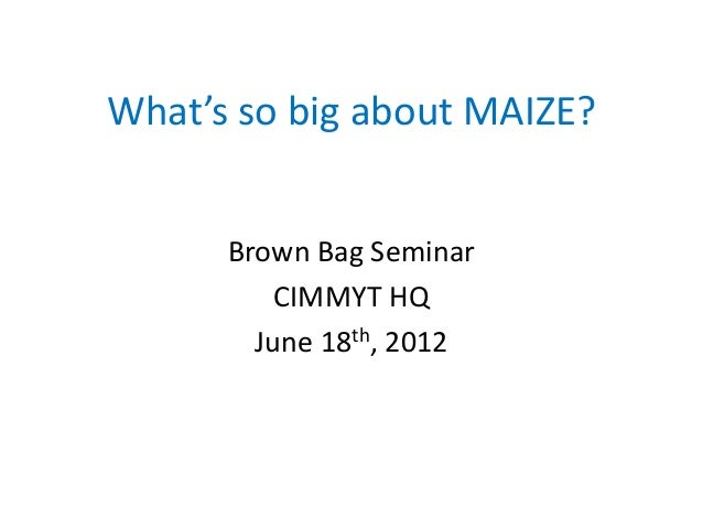 What's so big about MAIZE? Brown Bag Seminar CIMMYT HQ June 18th, 2012