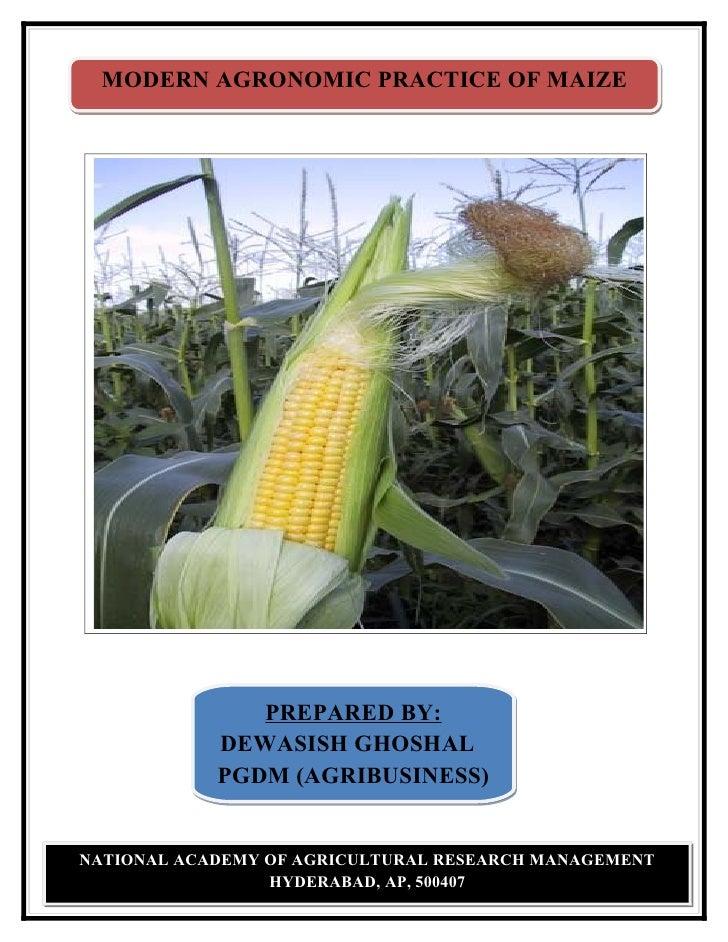 MODERN AGRONOMIC PRACTICE OF MAIZE                    PREPARED BY:             DEWASISH GHOSHAL             PGDM (AGRIBUSI...