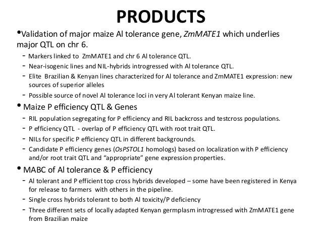 GRM 2013: Status of maize projects in the Comparative Genomics Research Initiative: Products and the future -- L Kochian Slide 2