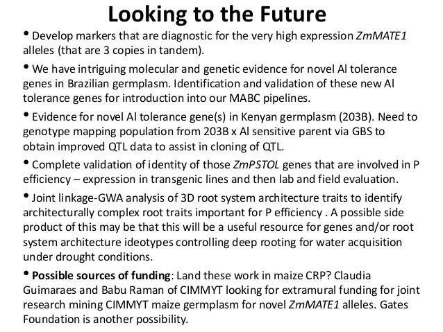 GRM 2013: Status of maize projects in the Comparative Genomics Research Initiative: Products and the future -- L Kochian Slide 3