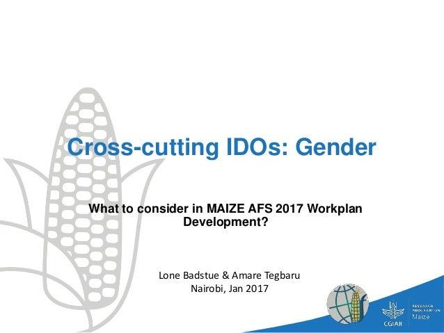 Cross-cutting IDOs: Gender What to consider in MAIZE AFS 2017 Workplan Development? Lone Badstue & Amare Tegbaru Nairobi, ...