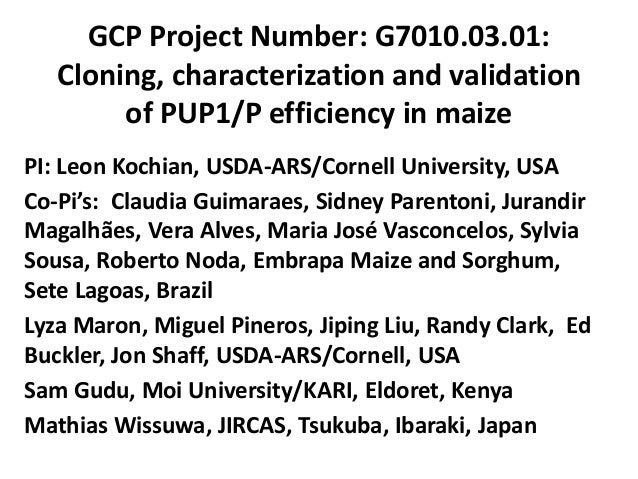 GCP Project Number: G7010.03.01: Cloning, characterization and validation of PUP1/P efficiency in maize PI: Leon Kochian, ...