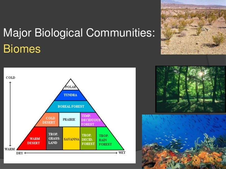 Major Biological Communities: <br />Biomes<br />