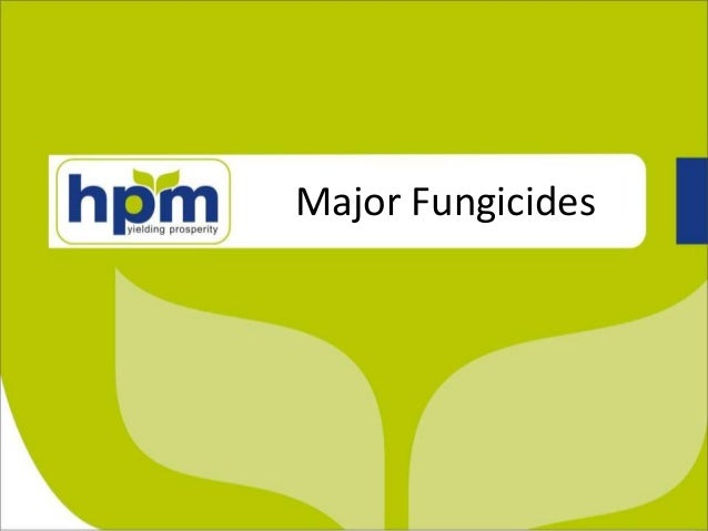 Major Fungicides