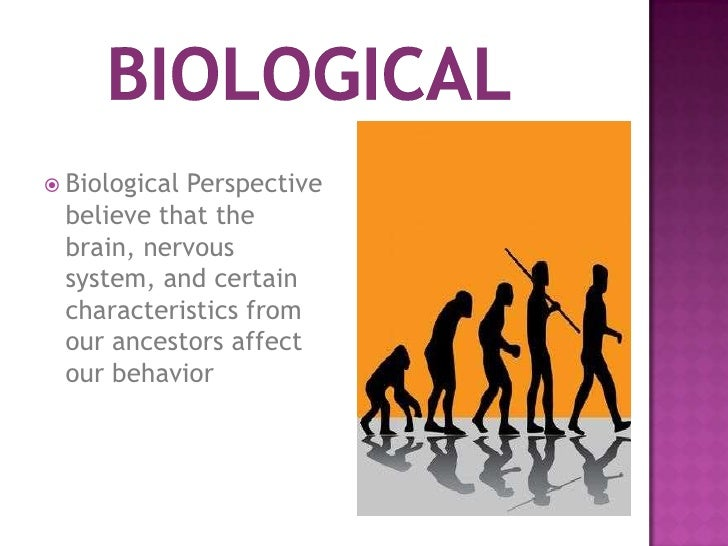 biological perspective of depression The biologic basis of bipolar disorder five mini-chapters on the brain chemistry of mania and depression the central role of the biological clock.
