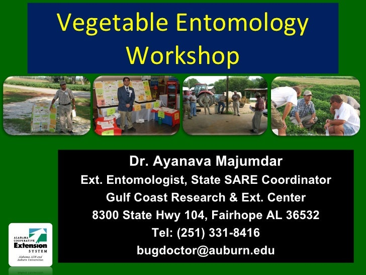 Vegetable Entomology Workshop Dr. Ayanava Majumdar Ext. Entomologist, State SARE Coordinator Gulf Coast Research & Ext. Ce...