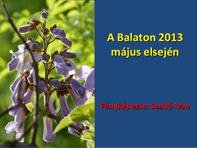 A Balaton 2013 május elsején  Fényképezte: Szedő Iván