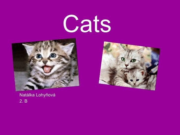 Cats Natálka Lohyňová 2. B