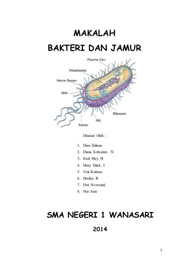 Makalah Bakteri Dan Jamur