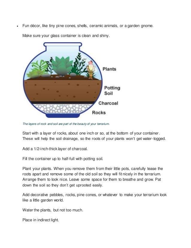 Make A Terrarium Mini