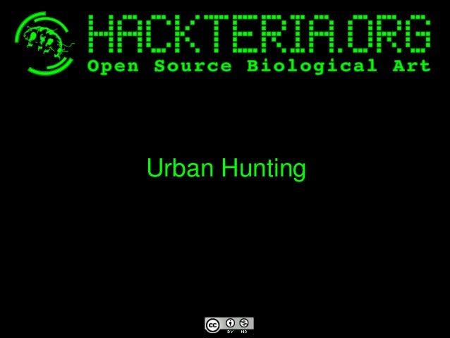 UrbanHunting
