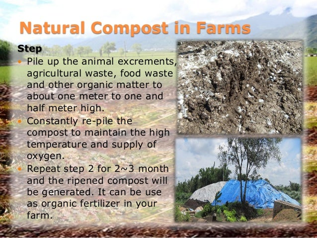 Natural Compost in Farms Step  Pile up the animal excrements, agricultural waste, food waste and other organic matter to ...