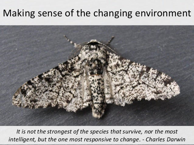 Making sense of the changing environment    It is not the strongest of the species that survive, nor the most intelligent,...